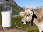 Confagricoltura Lombardia applaude il ministro Catania sulle quote latte