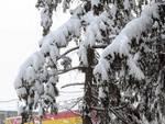 I particolari della nevicata