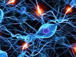 In Lombardia sono oltre 10mila i pazienti colpiti da sclerosi multipla