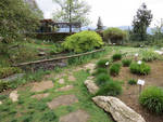 Visita all'orto botanico