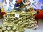 Maxi sequestro di marijuana a Zingonia
