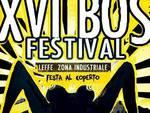 XVI Bos Festival a Leffe