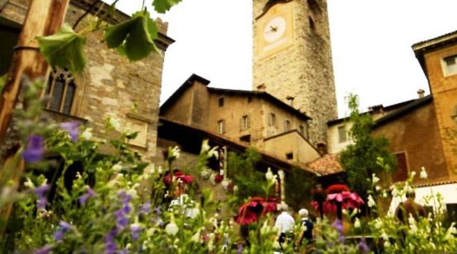 Il verde è tornato in Piazza Vecchia, a Bergamo Alta
