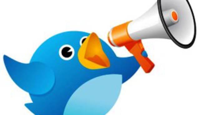 Un anno di Twitter in Italia