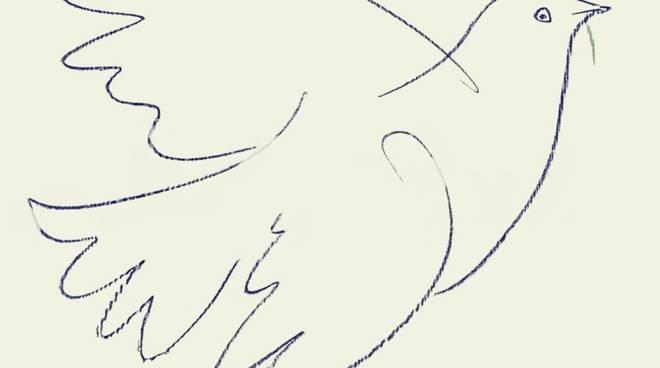 spesso Marò, via lo striscione Su Palafrizzoni la colomba della pace di  ED66