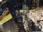 Rondò di Monterosso: abbattimento in corso