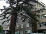 L'ospedale di Gazzaniga dove il medico lavorava