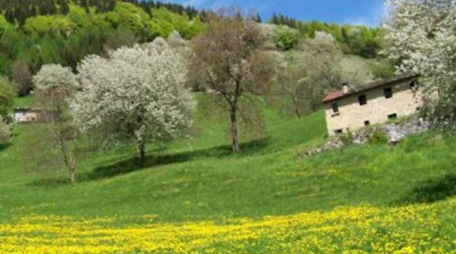 Paesaggio fitopastorale della Valle Brembana