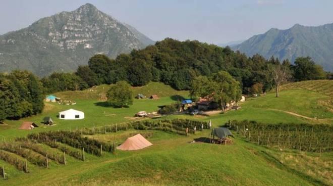 Terreni agricoli montani