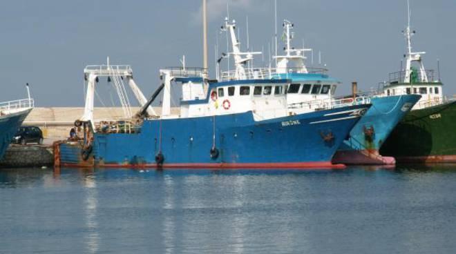 Il peschereccio Airone (foto VesselFinder)