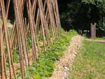 Inaugurata la valle della biodiversità
