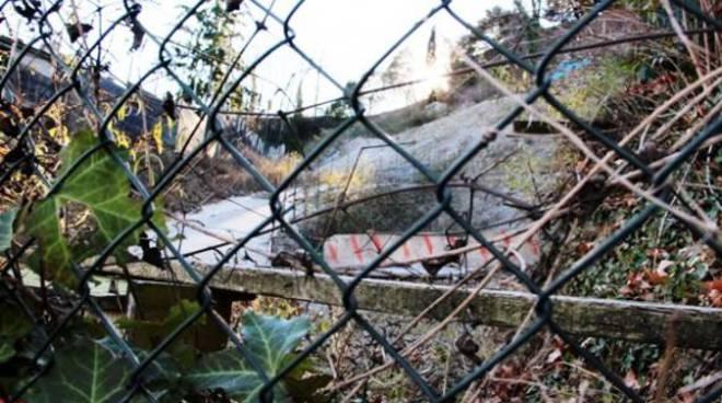 """""""Sbagliato, antistorico, dannoso"""": ambientalisti contro il parcheggio all'ex faunistico"""