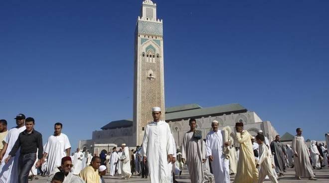 Topo crea caos in una moschea: 81 feriti