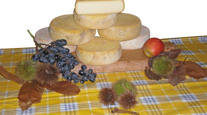 Raccolta firme in alta Valseriana contro il formaggio senza latte