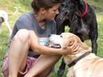 Alice Zelaschi con alcuni dei cani ad Entratico