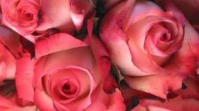 Asta dei fiori a Pedrengo
