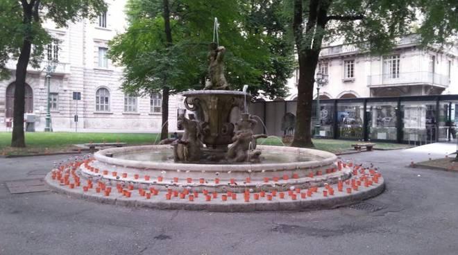 Fiori spuntati in Piazza Dante