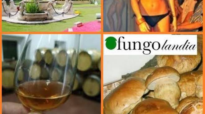 Fungolandia, Festa del Moscato, Miss... quanti eenti nel primo weekend di settembre