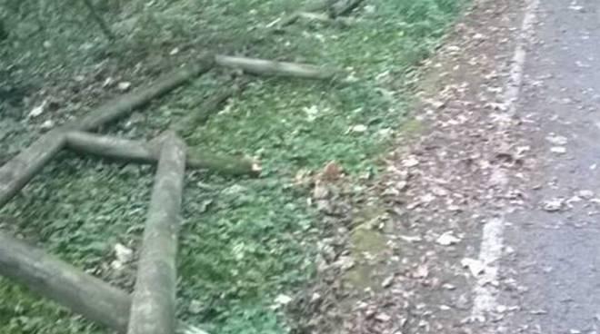 Danni alla pista ciclabile