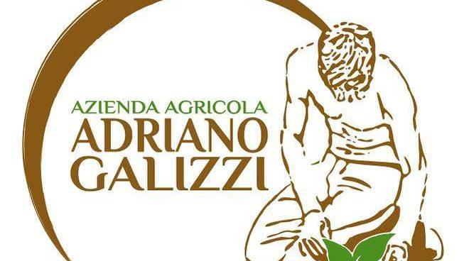 L'azienda agricola di Adriano Galizzi