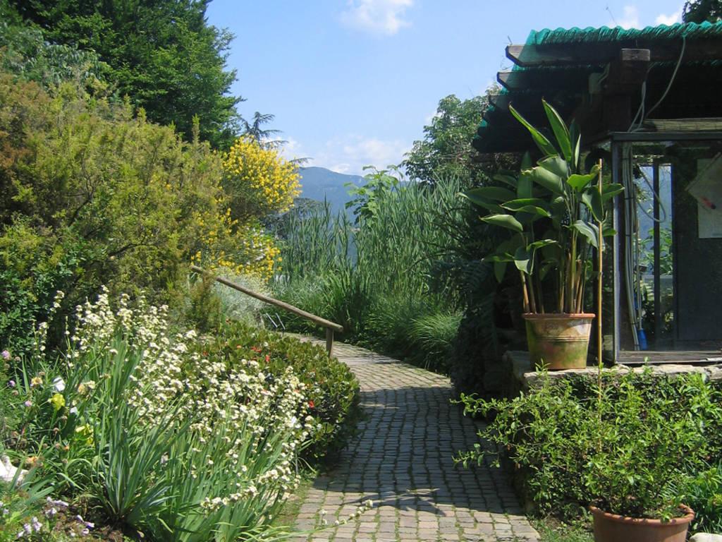 Orto Botanico 1