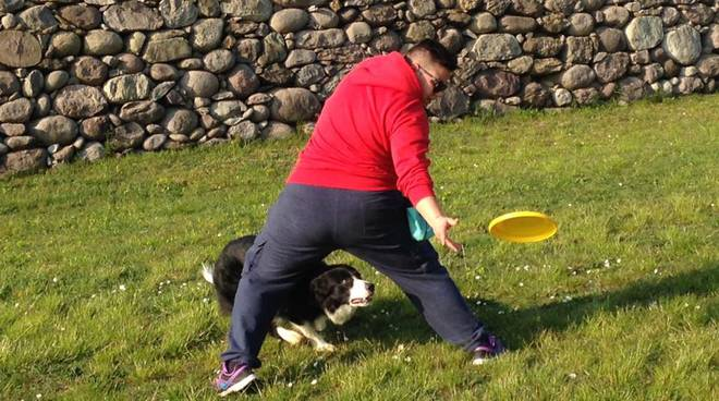 frisbee col cane
