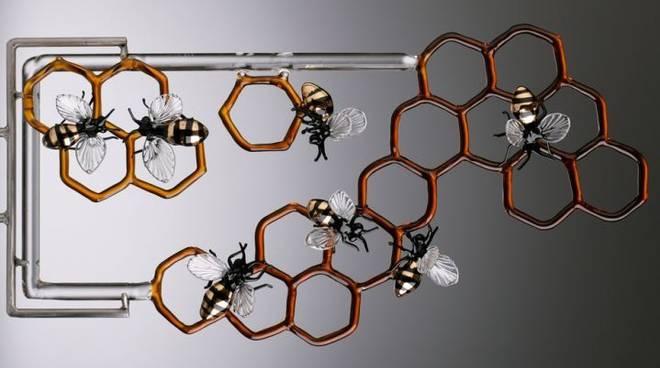 api ascof