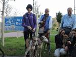 Sarnico dog friendly