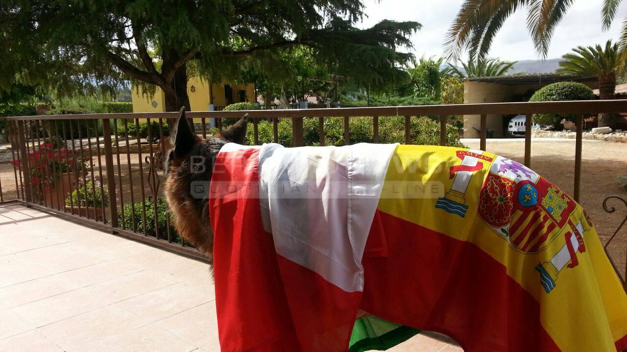 Italia Spagna