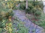 Degrado al Parco Locatelli