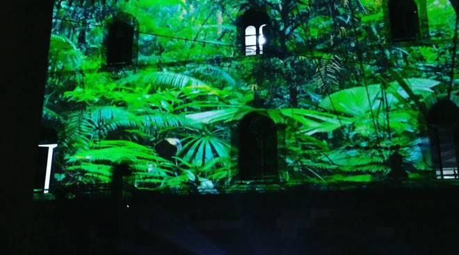 Clay Paky compie 40 anni: con la luce trasforma Città Alta in natura selvaggia