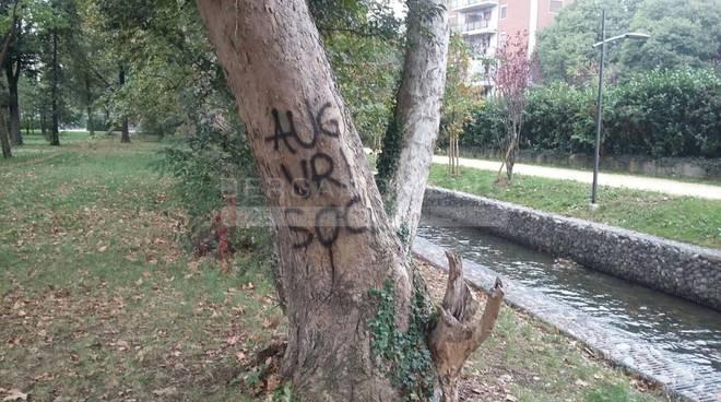 """Alberi imbrattati con vernice a Treviglio, il sindaco: """"In giro troppi idioti"""" foto"""