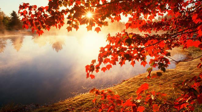 sole autunno