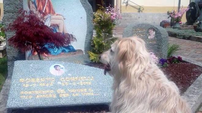 cane magoni cimitero