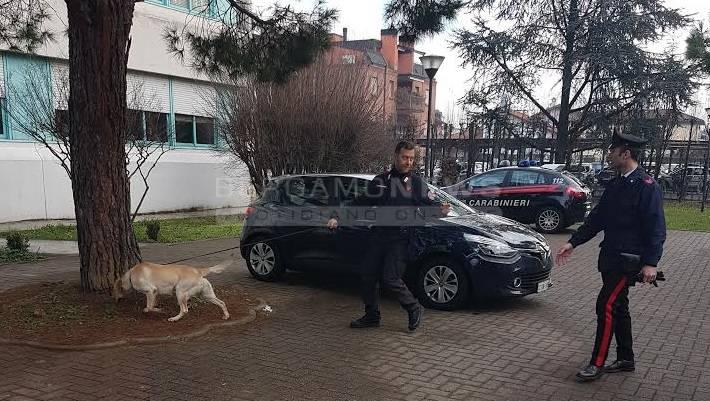 Cane antidroga in azione a Treviglio