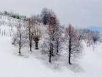 Neve su Bergamo e provincia
