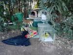 Vandali alla colonia felina del cimitero di Bergamo