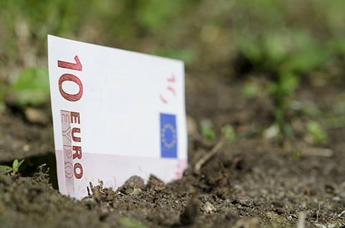 Terreno soldi