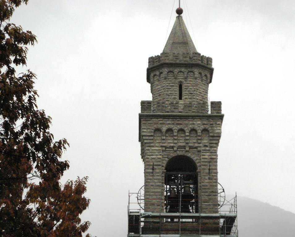 campanile albino