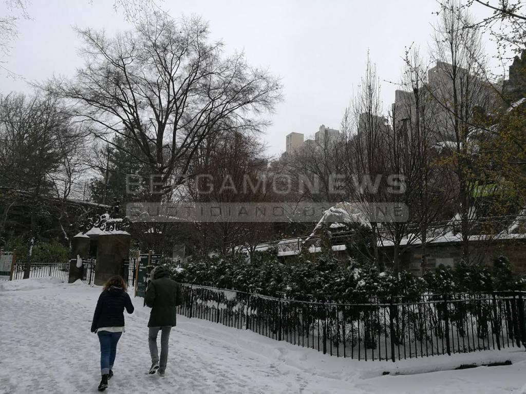 New York con la neve