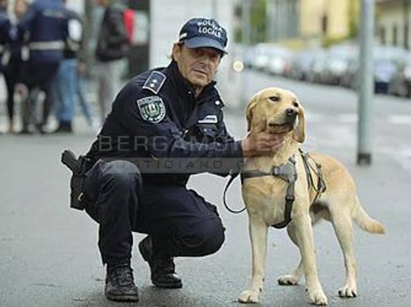 cane trevi droga