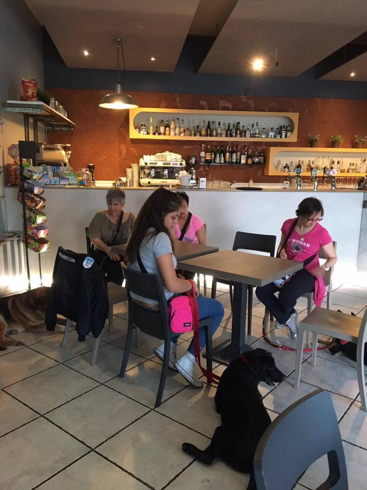 """A Palosco un corso collettivo di """"educazione civica"""". Ma per cani"""