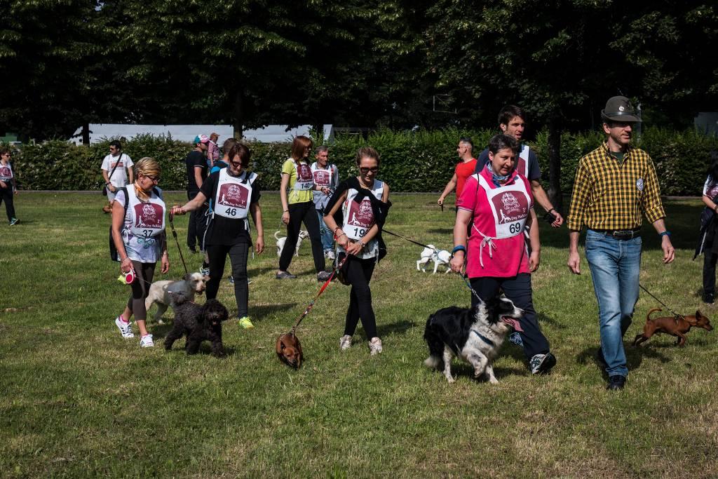 Dog Day Bergamo