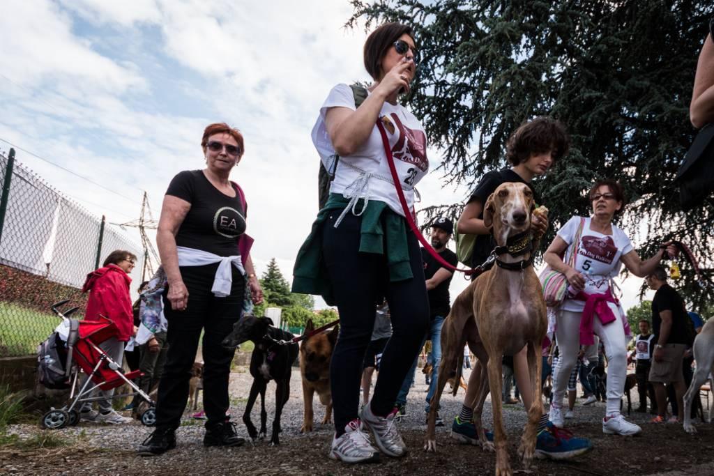 """""""Dog Day Bergamo"""", giornata dedicata ai cani e ai loro padroni a Levate"""