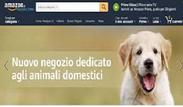 amazon animali