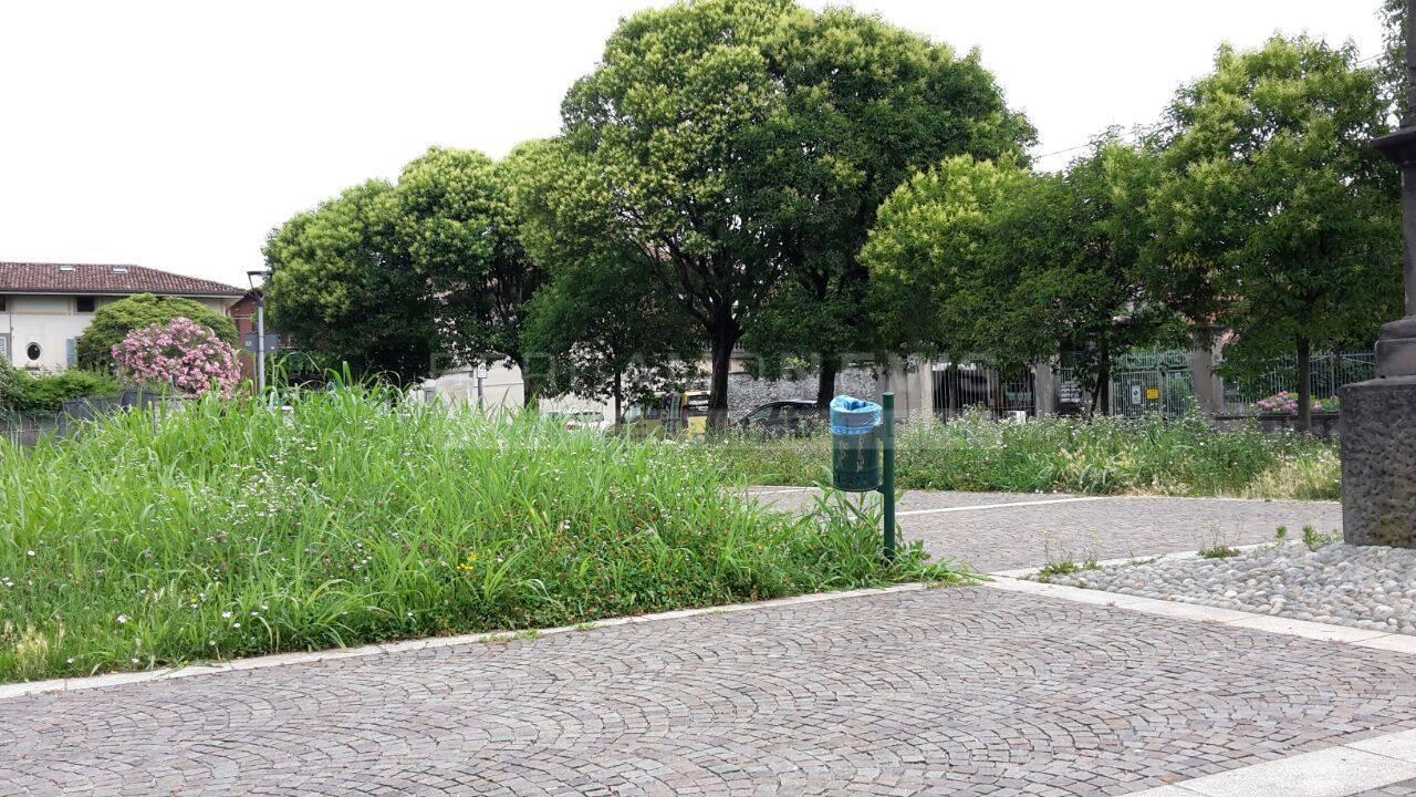 Verde pubblico a Seriate