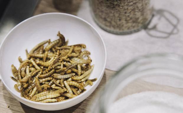 Insetti in cucina e sulle tavole degli italiani fra pochi mesi