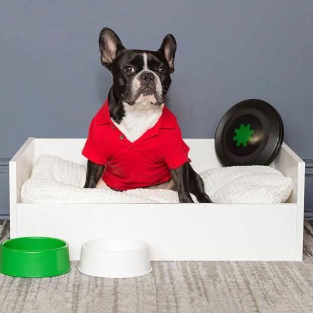 Mobili Per Gatti Ikea : Catalogo sfizioso di mobili per cani e gatti lo lancia ikea