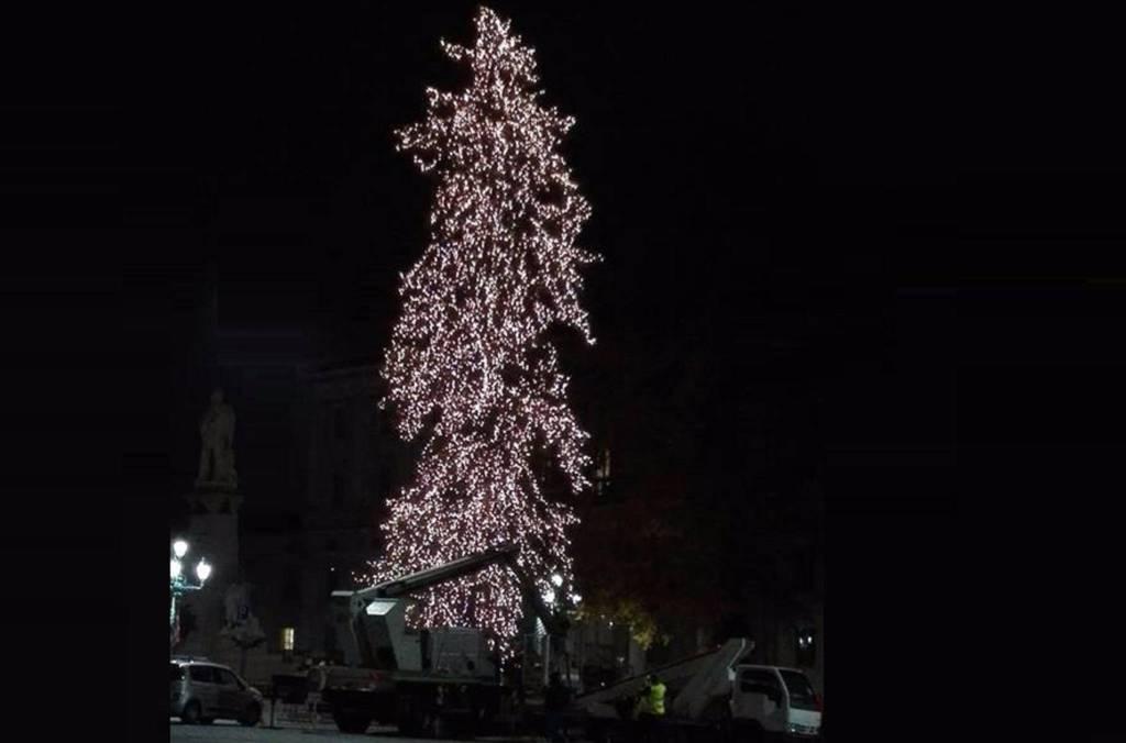 Albero Di Natale Grande.A Bergamo Si Accende Il Grande Albero Di Natale Bergamo News