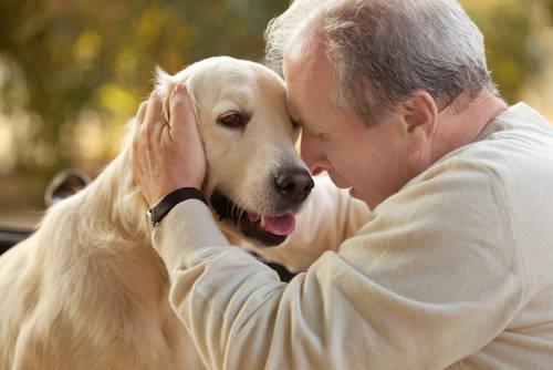 Con Un Cane Per Amico Migliora La Salute Meno Infarti E Ictus